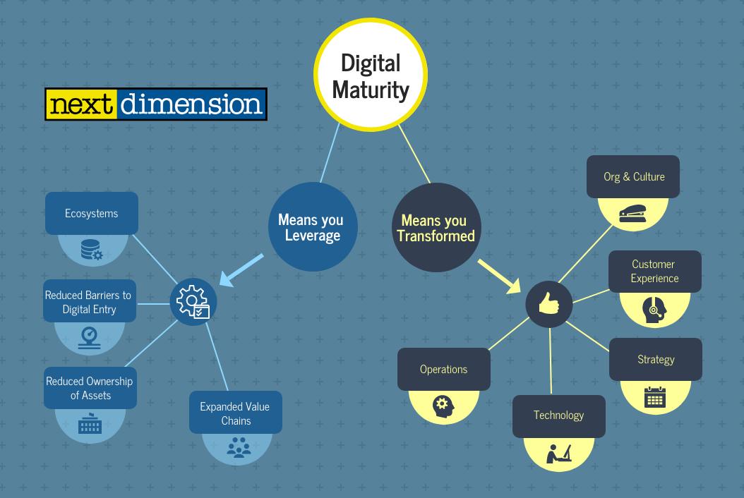 digital-maturity-snapshot